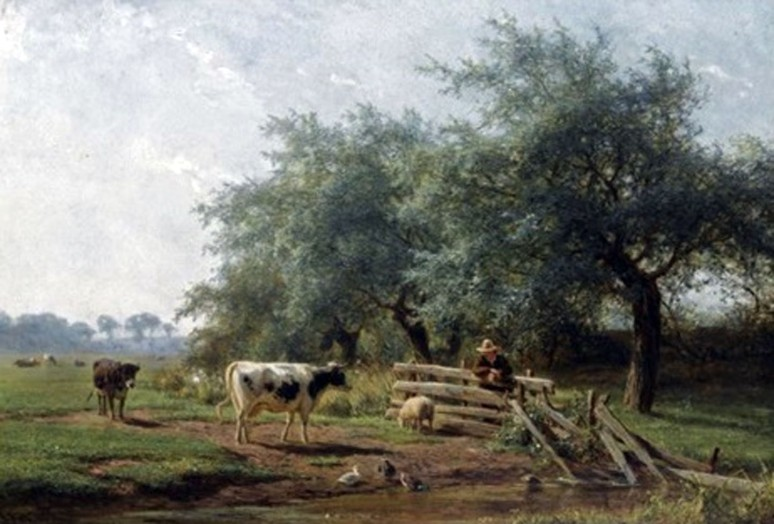 Koeien in een wei
